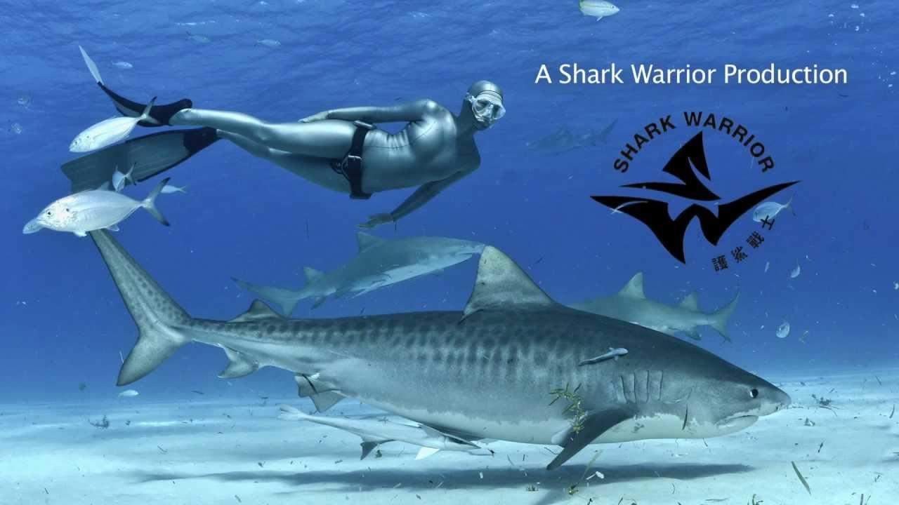 Famous Female Divers: Andrea Marshall • Scuba Diver Life