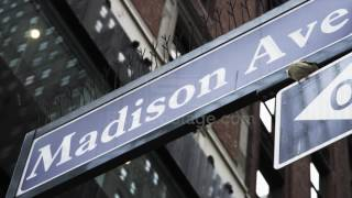 Low angle close up of Madison Avenue street sign