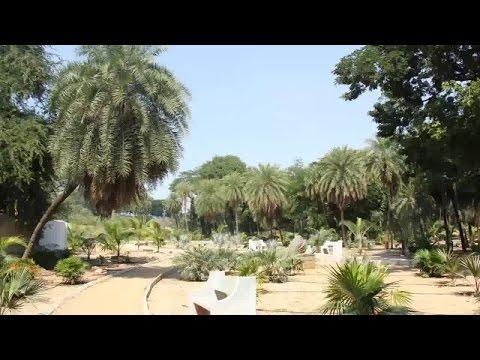Indira Park Views-Hybiz.tv