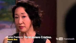 Grey's Anatomy  10x22 PROMO (Subtitulada en español)