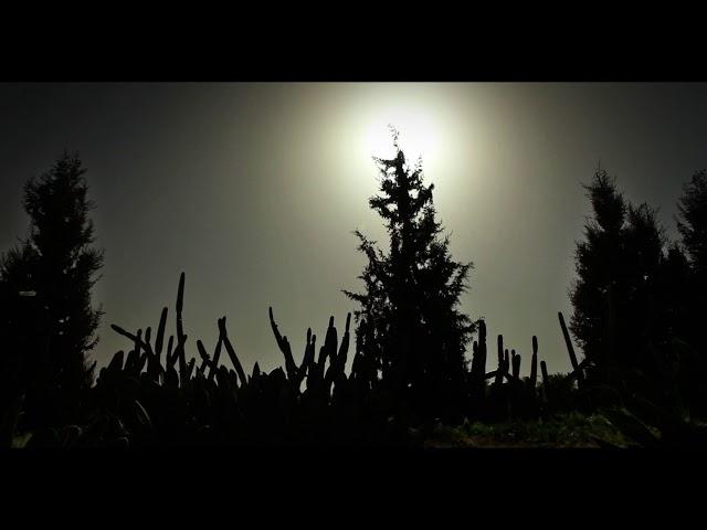 La tierra es libre... Vídeo de interés ecológico, humanitario y sociocultural