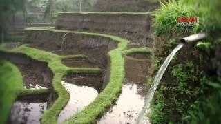 Subak, Irigasi Tradisional Alam Bali