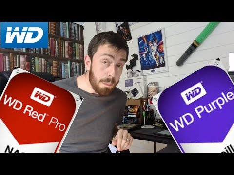 Should I buy WD Red or WD Purple for my NAS? What is the best balanced Drive?