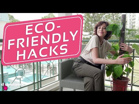 Eco-Friendly Hacks  – Hack It: EP104