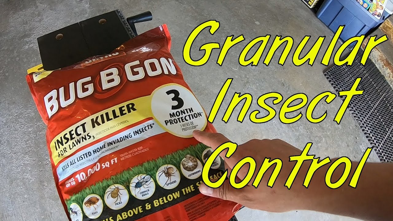 Granular Insect Control In The Lawn Youtube