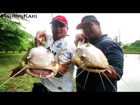 FishingKaki.com - Bangkok IT Monster Lake