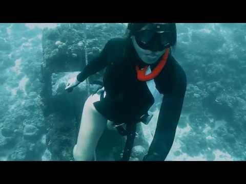 Crane Wreck Dive
