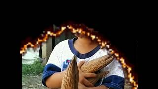 Download Video Jual Kasur Kapuk Murah 085649710793 MP3 3GP MP4