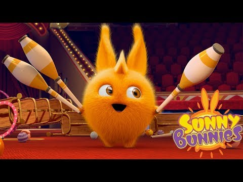 Cartoons for Children | SUNNY BUNNIES - CIRCUS SUPERSTAR | Funny Cartoons For Children