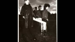 Flowers - Look Back In Anger