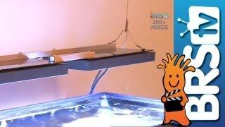 Ecotech Radion Aquarium Led Ep:9 How To Start A Salt Water Aquarium