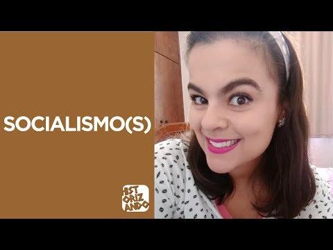 Ideias Sociais e Políticas do Século XIX I