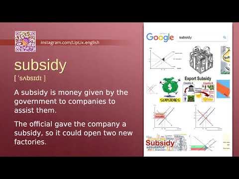 Subsidy : C1 level english vocabulary lesson, www.LipLix.com