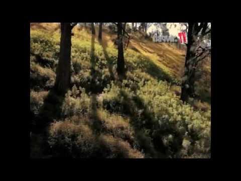 Cover Video Clip Nidji - Diatas Awan