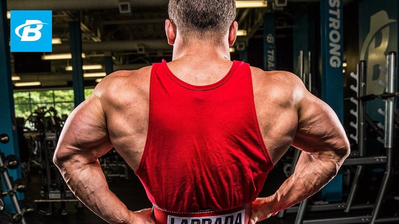 Image result for bodybuilding back