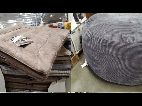 Costco! Pet Beds ($45) VS Jumbo Lounger ($99) ...for My Cat And I.