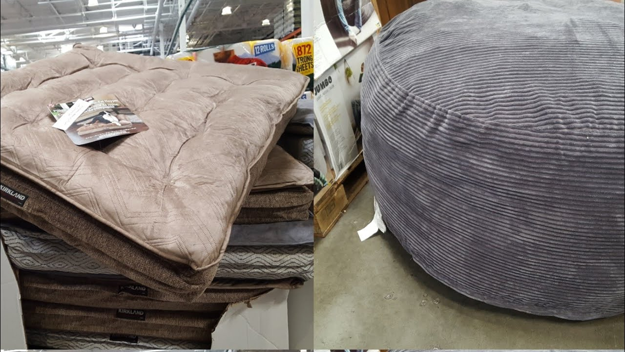 beds at new of costco dog luxury kirkland between world dogs amp bed