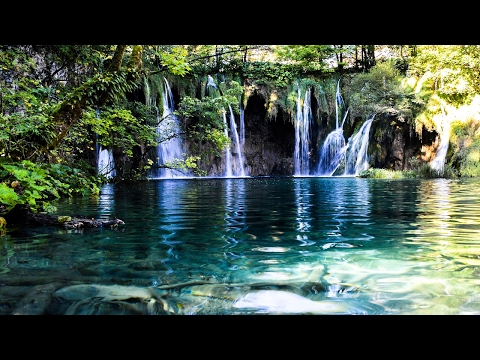 Deep Forest, Music for a Peaceful Mind, Sleep Relaxing Music