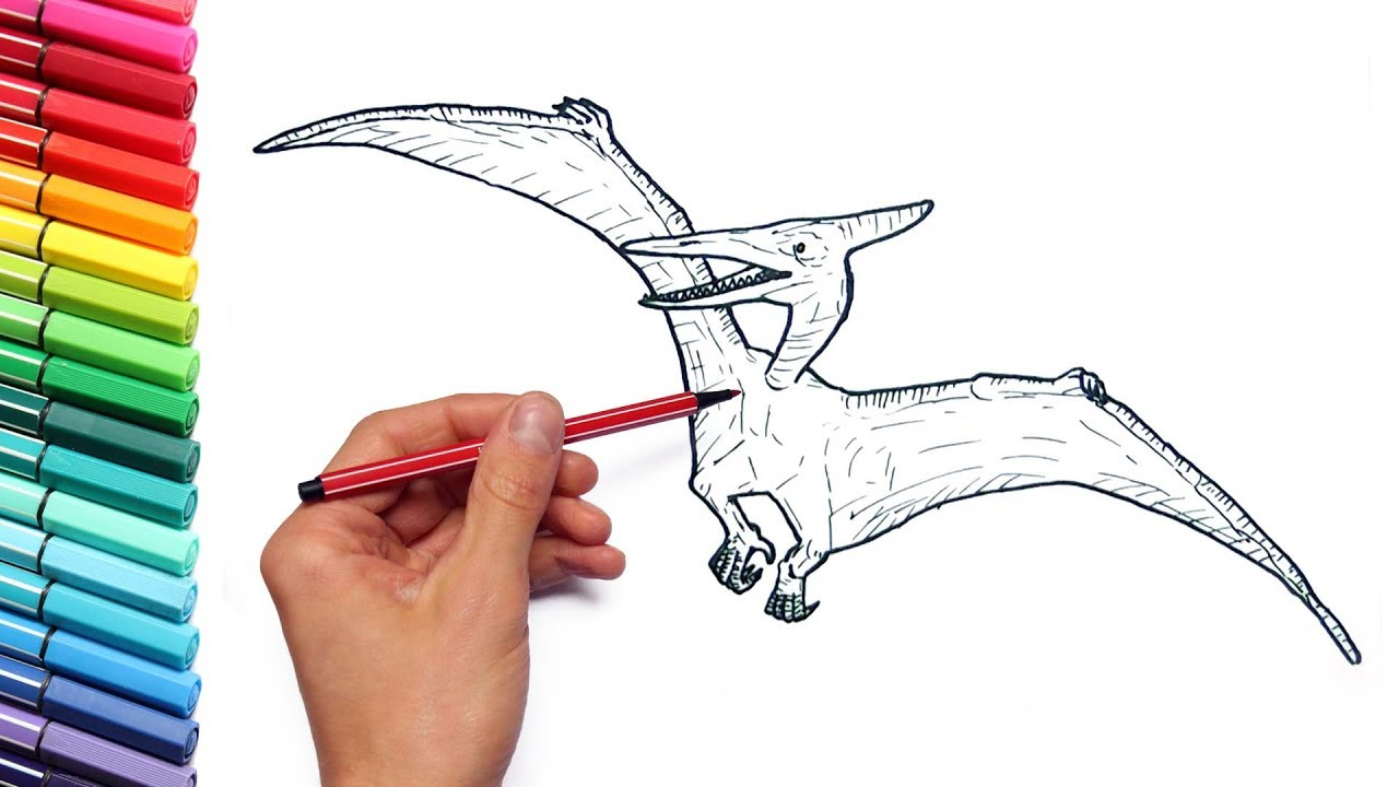 drawing and coloring pterodactyl from jurassic parck dinosaurs