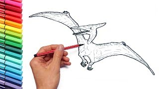Drawing and Coloring Pterodactyl From Jurassic Parck - Dinosaurs Color Pages for Children