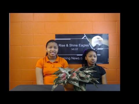 McCrorey Liston School of Technology Live Stream