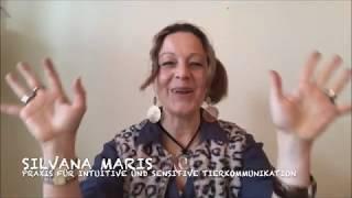 Silvana Maris - Ihre Praxis für sensitive und intuitive Tierkommunikation - Folge 2