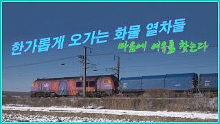 [철도영상] 덜커덩거리며 오가는 화물 열차들