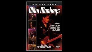 The Blow Monkeys - Professor Supercool