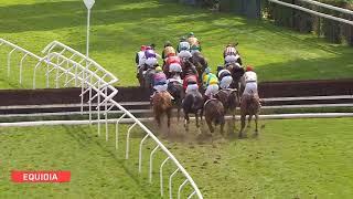 Vidéo de la course PMU PRIX WILD MONARCH