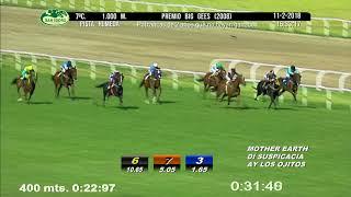 Vidéo de la course PMU PREMIO BIG GEES 2008