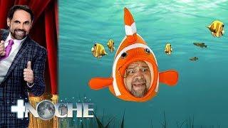 ¡Por la boca muere el pez! | + Noche | Distrito Comedia