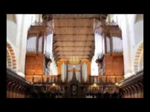 hertz  recreate  djpaolo [organ]