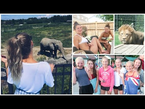 VLOG // Wild Animals, Pool Day & Meeting Subscribers!