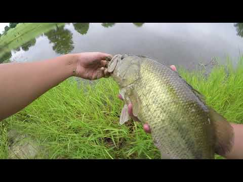 3 Lure Mini Challenge At Gastonia Ponds