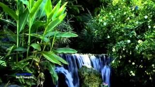 Sea of Tranquility - Paul Mottram