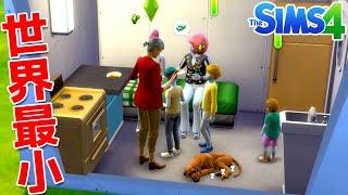 世界一狭い家に大家族で暮らしたらやばすぎることになったSims4