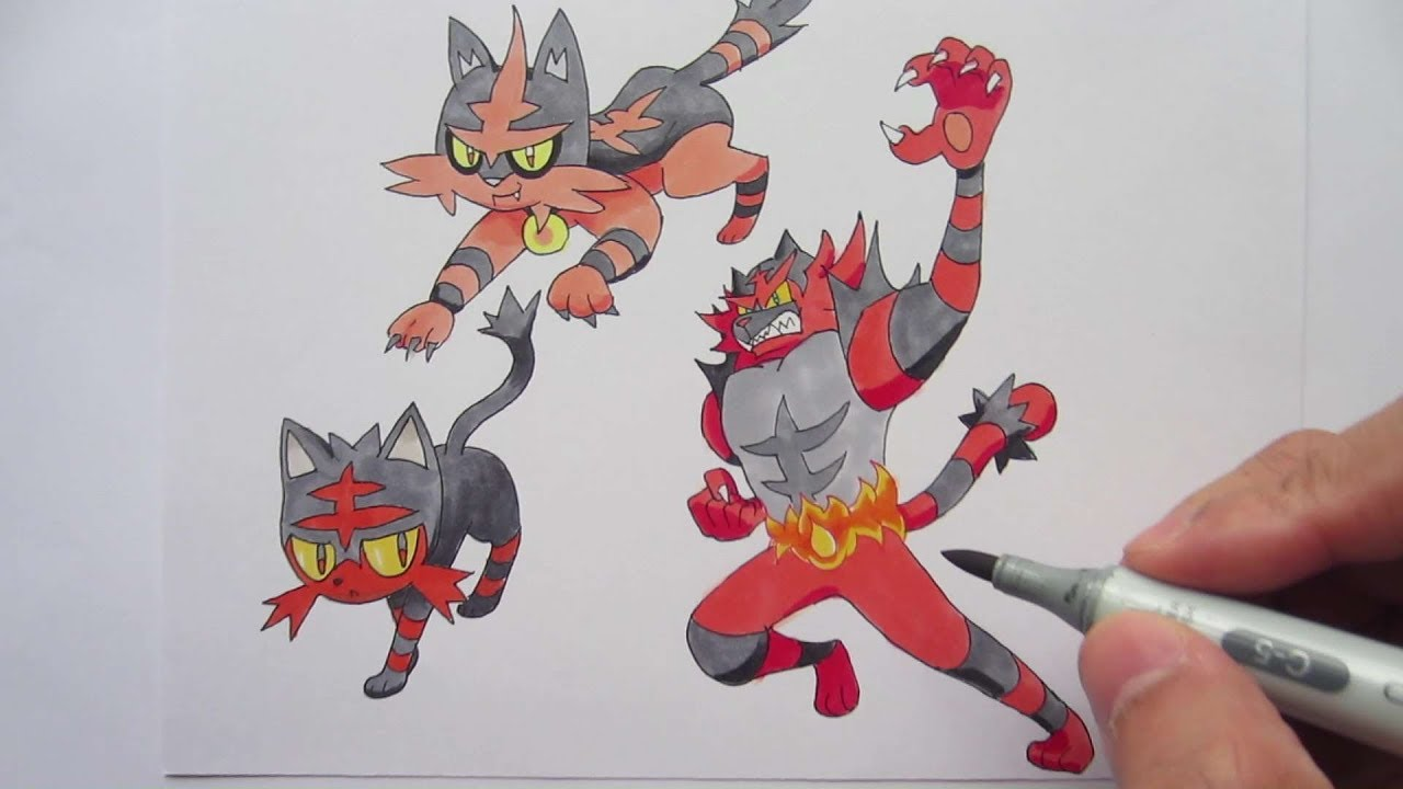Drawing Pokemon No 725 Litten No 726 Torracat No 727
