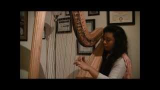 """""""You & Me"""" by Lifehouse Harp Cover"""