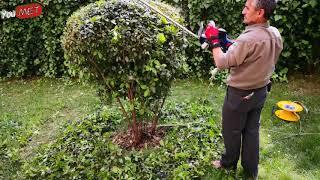 Bahçe İşleri Hyundai HT600 Elektrikli Budama Makinası 600W Ağaç budamaşekillendirme aletleri YouMet