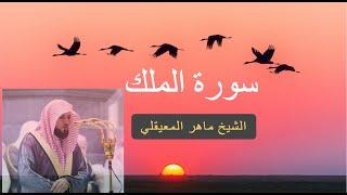 سورة الملك  كاملة للشيخ ماهر المعيقلى