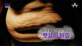 [교양] 닥터 지바고 247회_190617_염증을 만드는 공장! 뱃살의 비밀!