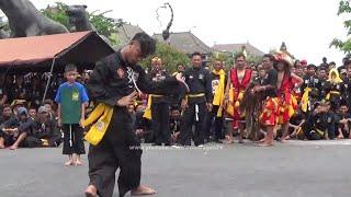 Download Video Aksi Pendekar SH Winongo Menari Bujang Ganong MP3 3GP MP4
