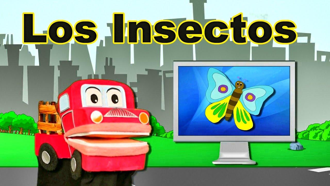 Descubriendo a los insectos videos educativos para ni os - Como ahuyentar los mosquitos ...