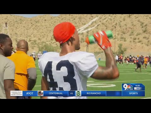 Ross Provides Athleticism In UTEP Secondary