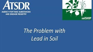 The Problem with Lead in Soil