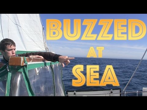 Buzzed at Sea  | #43 | DrakeParagon Sailing Season 3