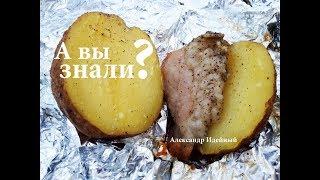 Как приготовить картошку и рыбу в фольге на углях