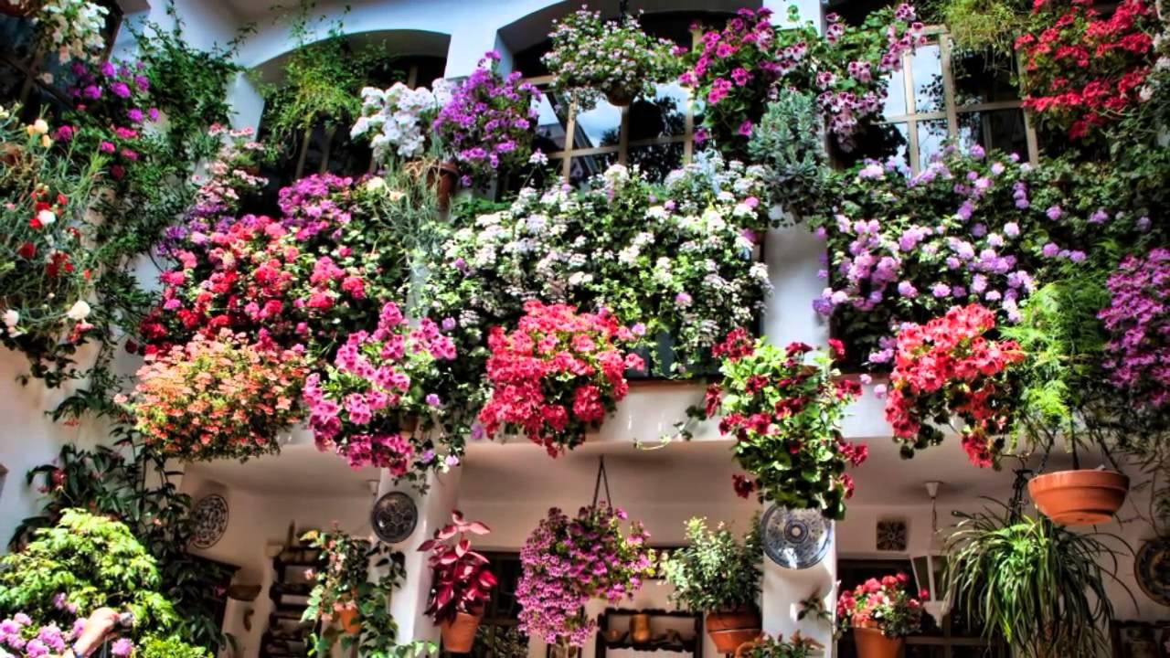 Beau Spanish Gardens