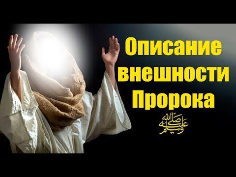 Любимец Всевышнего 53 часть. Первое Государство Пророка (ﷺ)