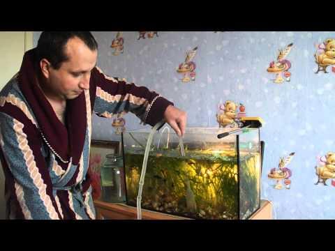 Как чистить аквариум, сифонить дно. Урок №12.
